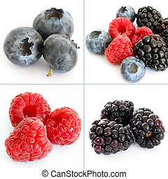 Colorful berry collage of four phot