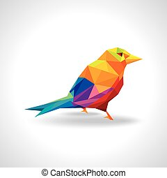 colorful bird illustration