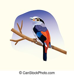 colorful bird sitting on branch vector