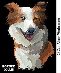 Colorful Border collie vector image
