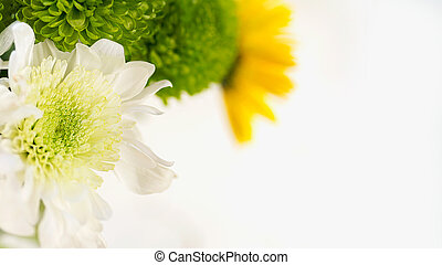 colorful bouquet of chrysanthemums on a light background green and yellow colors macro selective focus