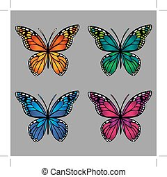 colorful butterflies on gray background