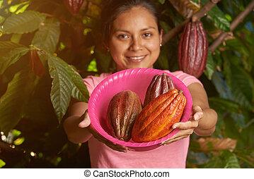 Colorful cacao farm theme