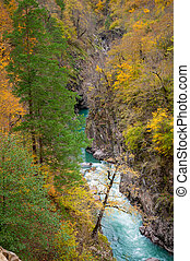 Colorful canyon of mountain river in fall season