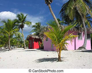 Colorful Caribbean houses tropical vivid colors