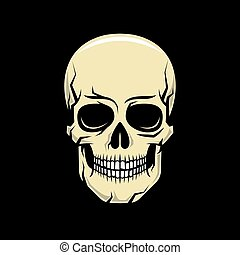 Colorful cartoon realistic skull on a black background. Vector illustration.