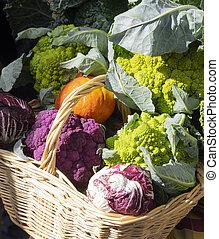colorful cauliflower, radicchio, salad and pumpkins in a wicker basket
