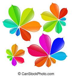 Colorful Chestnut Leaves Set
