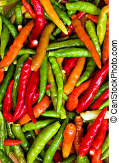 Colorful chili in green red orange color