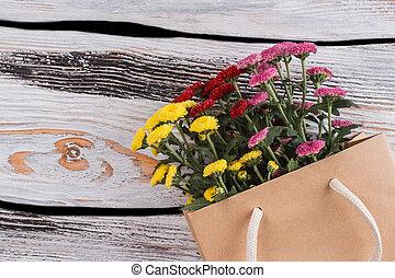 Colorful chrysanthemum in a paper bag.