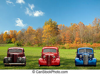 colorful classic cars in field in autumn
