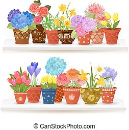 colorful collection of fine flowers planted in ceramic pots on w