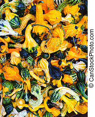 Colorful decorative gourds