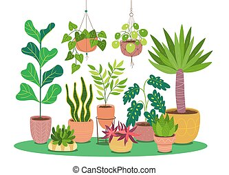 Decorative houseplants growing in pot. Vector illustration isolated on white background. Design elements easy to edit and rearrange. Landscape format.