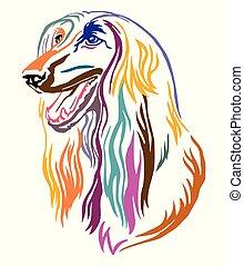 Colorful decorative portrait of Afghan Hound Dog vector illustration