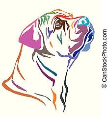 Colorful decorative portrait of Boerboel Dog vector illustration