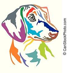 Colorful decorative portrait of Dog Dachshund vector illustration