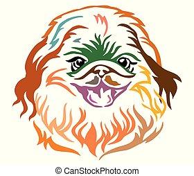 Colorful decorative portrait of Dog Pekingese vector illustration