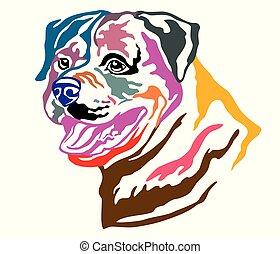 Colorful decorative portrait of Dog Rottweiler vector illustration