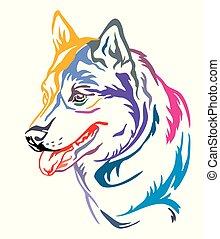 Colorful decorative portrait of Dog Siberian Husky vector illustration