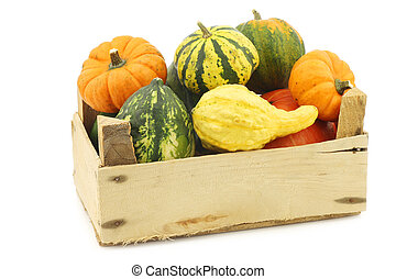 colorful decorative pumpkins in a wooden crate