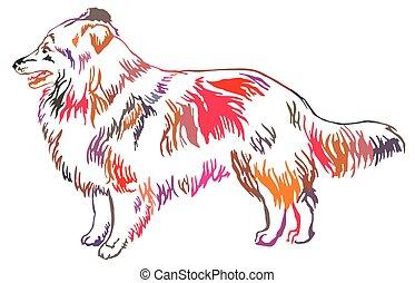 Colorful decorative standing portrait of Sheltie vector...