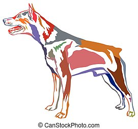 Colorful decorative standing portrait of dog Miniature Pinscher vector illustration