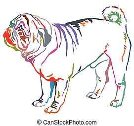 Colorful decorative standing portrait of dog pug vector illustration