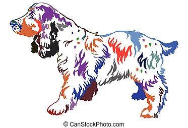 Colorful decorative standing portrait of dog Russian Spaniel, vector illustration
