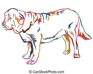 Colorful decorative standing portrait of dog Spanish Mastiff vector illustration
