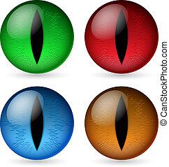 Colorful dragon eyes