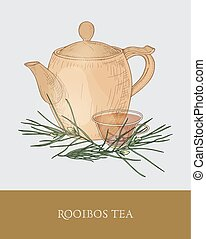 Colorful drawing of teapot, transparent cup with steeping rooibos tea, fresh leaves on gray background. Tasty aromatic herbal infusion. Vector illustration hand drawn in vintage style for tag, label.