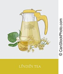 Colorful drawing of transparent pitcher with strainer, cup of floral tea or herbal infusion and linden branch with flowers and leaves hand drawn in vintage style. Vector illustration for label, promo.