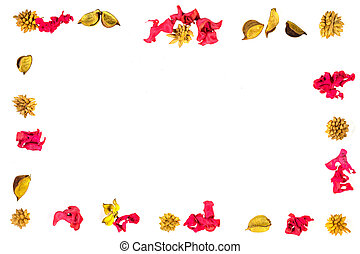 Colorful dried plants border frame on white background. Top view, flat lay.
