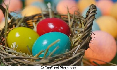 Colorful easter eggs in nest on meadow