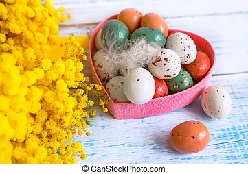 Colorful Easter eggs on a white dish in the shape of hearts and flowers of Mimosa on a blue wooden table. Close up.