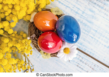 Colorful Easter eggs on a white dish in the shape of hearts and flowers of Mimosa on a blue wooden table. Close up. copy space.