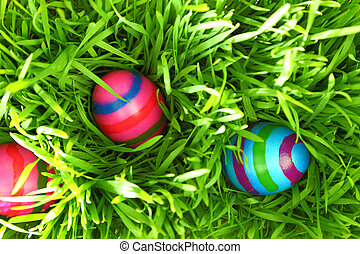 Colorful Easter eggs on fresh green grass