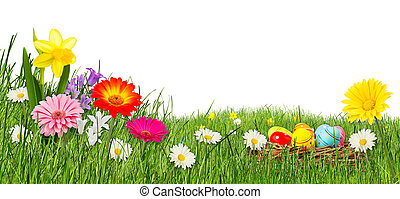 colorful easter meadow