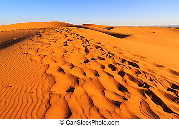 Colorful evening sun light shining on the sand dunes of the Erg Chebbi desert near Merzouga in Marocco