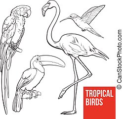 Colorful exotic tropical birds - flamingo, macaw,...