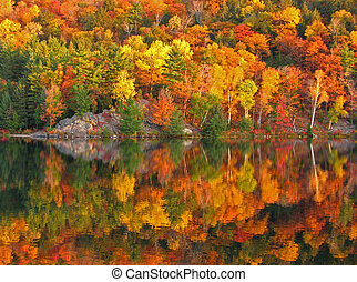Colorful fall - Autumn lake reflection. George Lake.