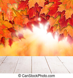 Colorful fall background. Autumn maple leaves and abstract sun light with empty white wooden board background
