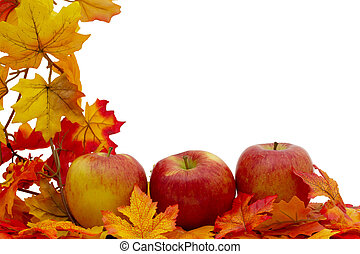 Colorful Fall Border, Three apples on fall leaves isolated...