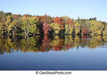 Colorful fall foliage reflected on
