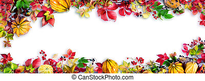 Colorful Fall Leaves On White