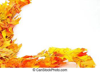 Colorful fall or autumn leaves ready for decoration
