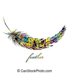 Colorful feather isolated on white background