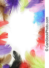 Colorful feathers border