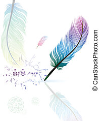 colorful feathers - Multicolored feathers Caption pen the...